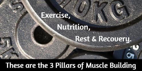 3 Pillars of Muscle Building