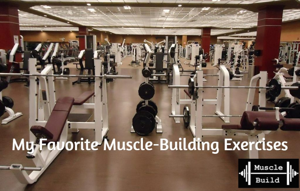 My 5 Favorite Muscle Building Exercises