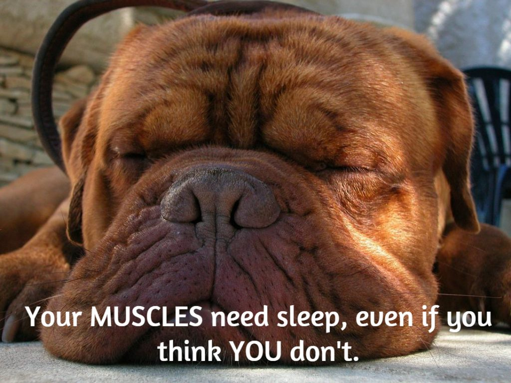 Sleep is necessary for muscle growth and recovery